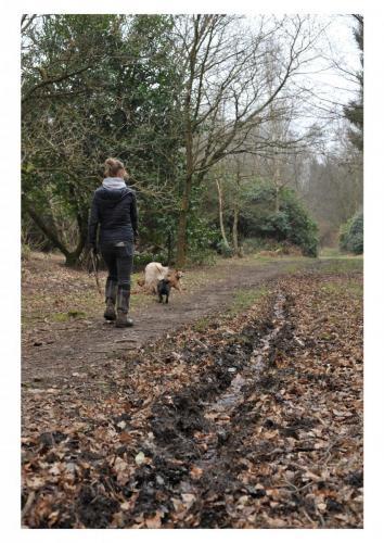 A3 mum walk (1)